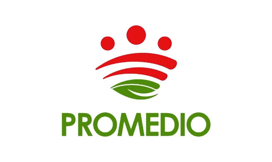Bases promoción interna dos plazas Encargado/a General (PROMEDIO) Diputación Badajoz