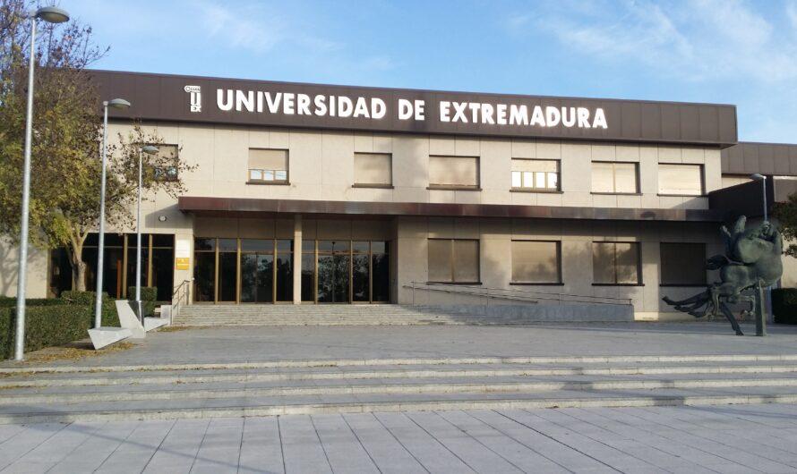 Bases promoción interna personal laboral Administración y Servicios UEX